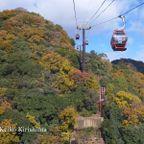 秋の女子旅 神戸布引ハーブ園