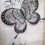 蝶Butterfly