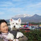 山陰ツアー2012、11、4~6