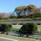 太陽光発電 物件