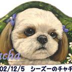 ペット肖像画 2008-2009-2010