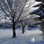 2015~16冬