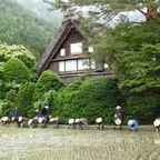 5月30日午前 「白川郷田植えまつり」in和田家水田にて開催されました!