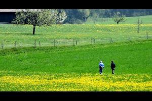 パウダースノーの下では、きっと春が蠢いている