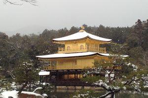 金閣寺へ行ってきました(・∀・)