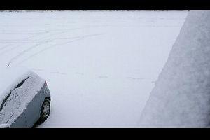 雪だー(*゚∀゚人゚∀゚*)♪