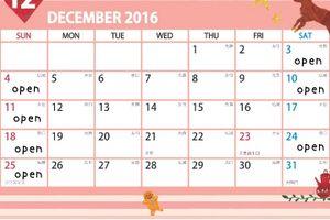 12月のひまわり営業日