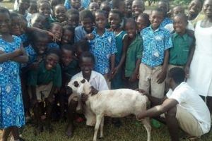 村人達による羊購入