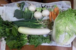 父の入院と、新鮮お野菜便