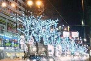 氷点下の札幌(-.-)クソ寒い日々・・・・