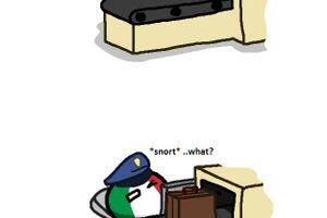 【アメリカ】イタリアの空港警備【ポーランドボール】