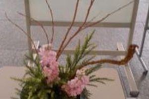 石化柳の街角花