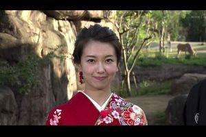 和久田麻由子 20161218 ダーウィンが来た!
