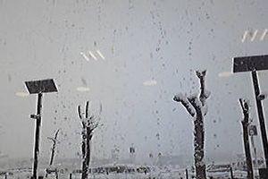 雪降ってますよー。