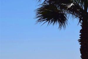 青い海と広い空の下で