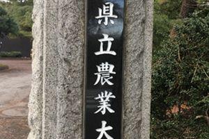 就職説明会に参加!