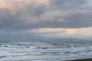 江の島水族館前波情報