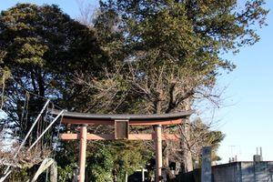 久伊豆神社(蓮田市駒崎)
