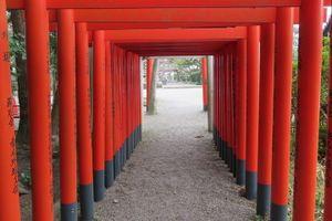 桑名市「九華公園」へ 楽しみがいっぱいでした♪(1)