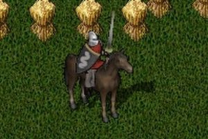 『Jousting in UO』 衣装コンテストのルール