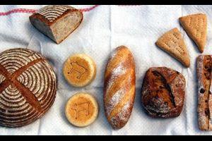 12月のコウボパン小さじいち、パン販売のお知らせ♪