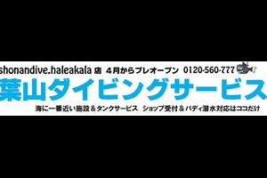 最短2日で鎌倉 PADI Cカード取得コース35,800円&バディ潜水者へのタンク貸しもやってます。