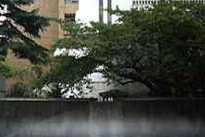 横浜市中区山下町の噴水