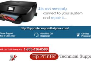 HP Printer Toll Free Number
