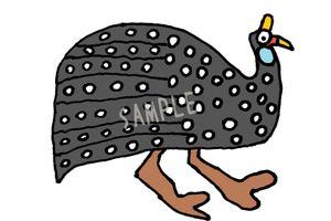 アーティストTAKUOの本日の作品「ホロホロ鳥」