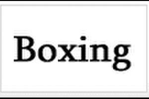 【衝撃の映像クイズ】 ボクシング : ロイ・ジョーンズJr vs. エンゾ・マカリネリ 【勝者予想】