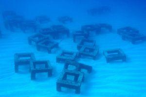 [喜界島観光案内所] 世界に誇る透明度の高い海