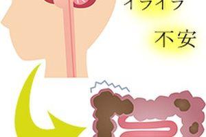 「美甘麗茶(びかんれいちゃ)」は、どうしてダイエットがしやすくなるのか?