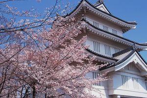 ?第3回 Booty桜ふぇすin行田市 ロケーション紹介?