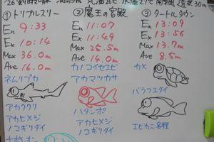 宮古島 ダイビング日記 2016/11/26