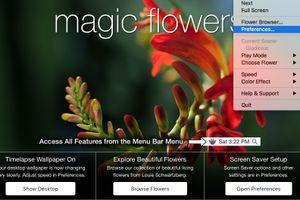 花が徐々に開いていく様をデスクトップに表示『Magic Flowers』