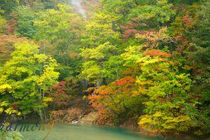 雫石 葛根田渓流の秋景色