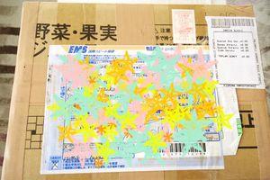 日本からEMSが届いた!