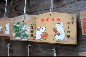 ホトトギス / 京都・大豊神社