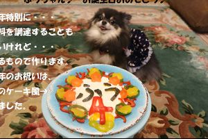 ふうちゃん♪ 今年の誕生日ケーキは・・・・?!