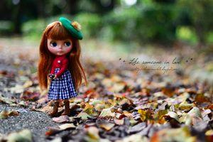 秋色のお写んぽ