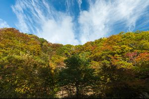 Autumn sky②