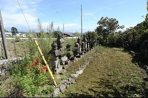 お寺の歴代住職のお墓の草取り