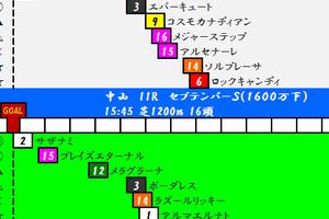 2016年9月24日JRA中央競馬予想 ききょうS(OP)中山/阪神競馬場