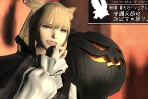 守護天節のかぼちゃ巡り。