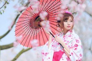 中国人「日中韓の伝統衣装の比較。和服、チマチョゴリ、漢服」「漢服>和服>チマチョゴリ」 中国の反応