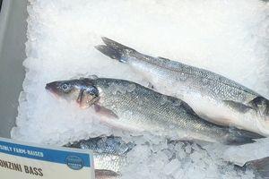 アメリカで食卓に上るお魚。今夜はBranzino(スズキ) @Whole Foods Market