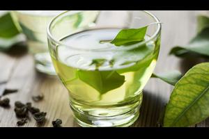 緑茶の健康効果がとにかく凄い!緑茶を1日5杯以上飲むと心筋梗塞、脳卒中、喘息のリスクが低下!