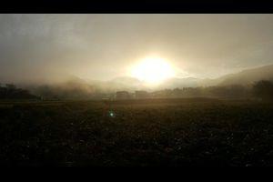 朝靄(あさもや)の中の光