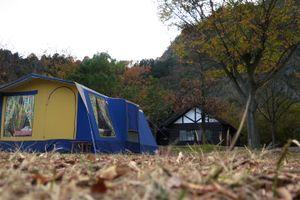 青川峡でコットン幕の雨キャンプ!