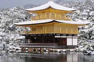 【京都雪化粧】「京都に移って6年目。夢だった雪化粧の金閣寺が見れた!」 雪化粧した京都の美しさ